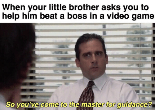 the master: When your little brother asks you to  help him beat a boss in a video game  So you've come to the master for guidance?