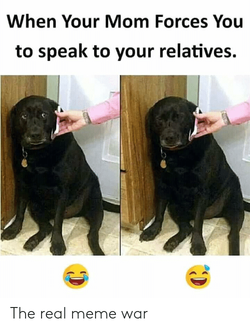 meme war: When Your Mom Forces You  to speak to your relatives. The real meme war