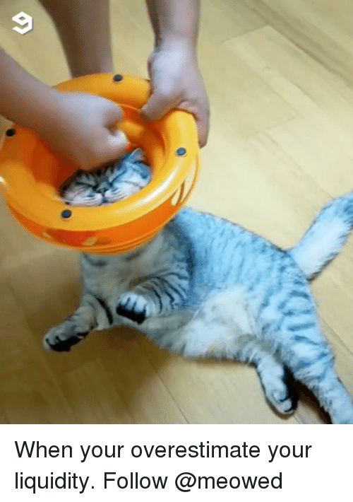 liquidity: When your overestimate your liquidity. Follow @meowed