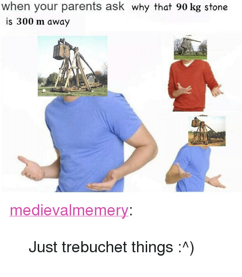 """trebuchet: when your parents ask why that 90 kg stone  is 300 m away <p><a href=""""http://medievalmemery.tumblr.com/post/151873247403/just-trebuchet-things"""" class=""""tumblr_blog"""">medievalmemery</a>:</p> <blockquote><p>Just trebuchet things :^)</p></blockquote>"""