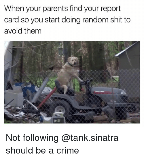 tanked: When your parents find your report  card so you start doing random shit to  avoid them Not following @tank.sinatra should be a crime