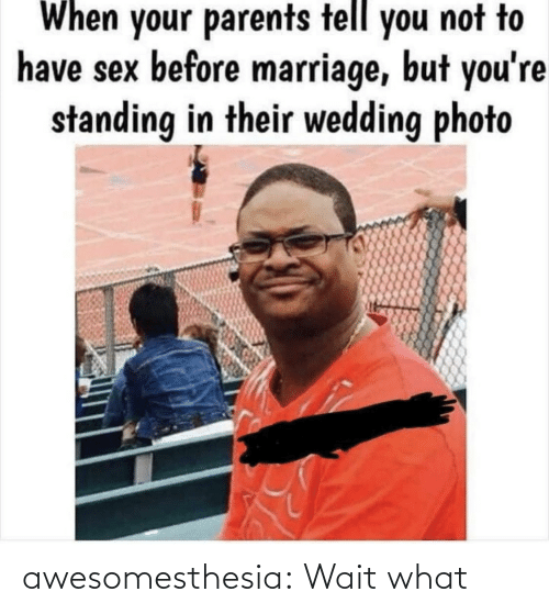 have sex: When your parents tell you not to  have sex before marriage, but you're  standing in their wedding photo awesomesthesia:  Wait what