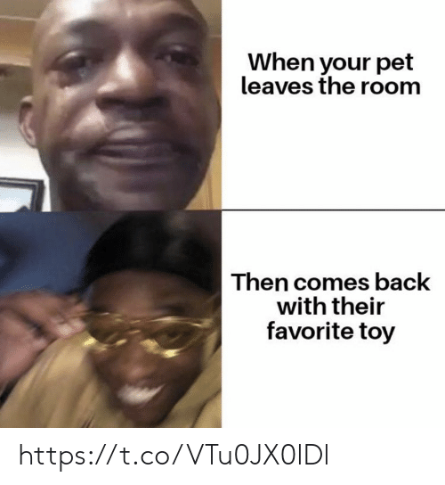 leaves: When your pet  leaves the room  Then comes back  with their  favorite toy https://t.co/VTu0JX0lDl