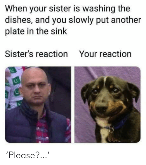 sisters: When your sister is washing the  dishes, and you slowly put another  plate in the sink  Sister's reaction  Your reaction 'Please?…'