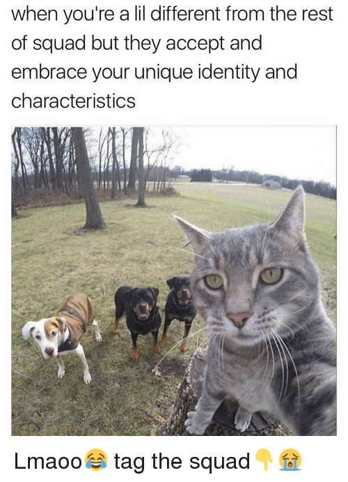 embracer: when you're a lil different from the rest  of squad but they accept and  embrace your unique identity and  characteristics Lmaoo😂 tag the squad👇😭