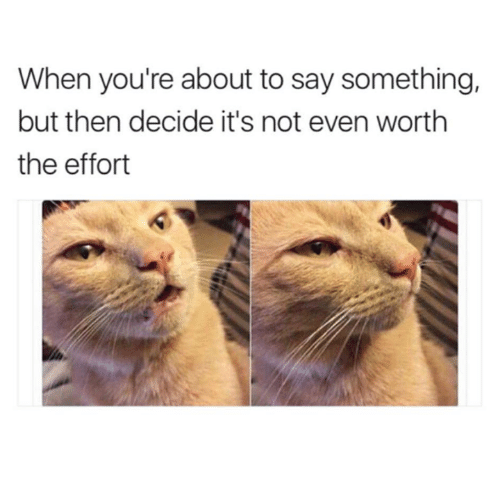 About To Say Something: When you're about to say something,  but then decide it's not even worth  the effort
