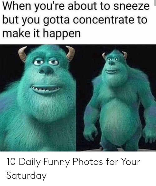 concentrate: When you're about to sneeze  but you gotta concentrate to  make it happen 10 Daily Funny Photos for Your Saturday