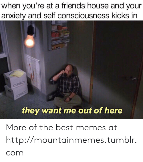 consciousness: when you're at a friends house and your  anxiety and self consciousness kicks in  CHIC  they want me out of here More of the best memes at http://mountainmemes.tumblr.com