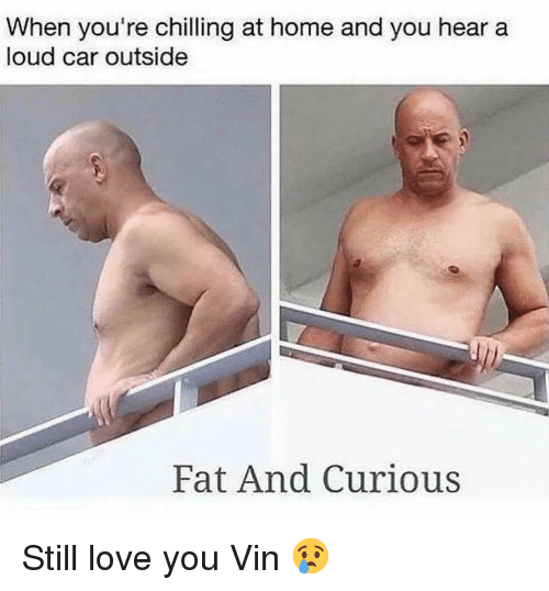 Gym, Love, and Home: When you're chilling at home and you hear a  loud car outside  Fat And Curious Still love you Vin 😢