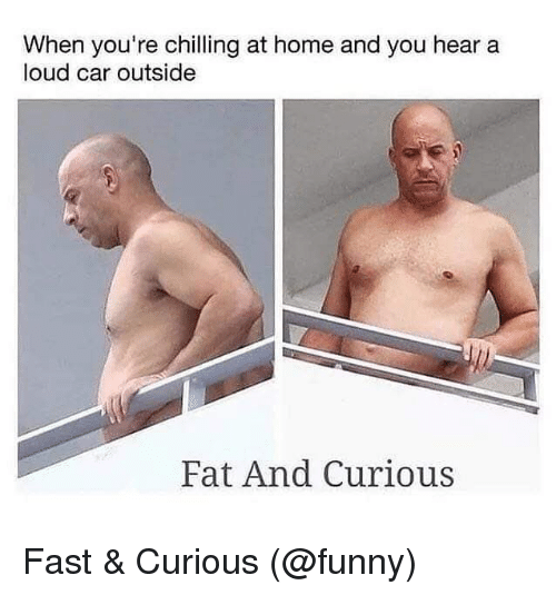 Funny, Memes, and Home: When you're chilling at home and you hear a  loud car outside  Fat And Curious Fast & Curious (@funny)