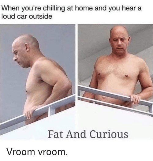Dank, Home, and Fat: When you're chilling at home and you hear a  loud car outside  Fat And Curious Vroom vroom.