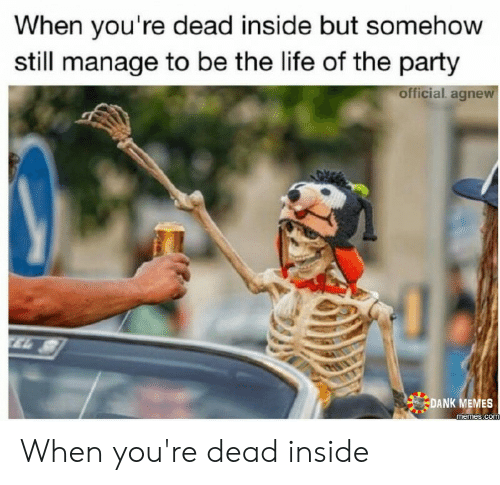 Dead Inside Meme: When you're dead inside but somehow  still manage to be the life of the party  official. agnew  TEL  DANK MEMES  memes.com When you're dead inside