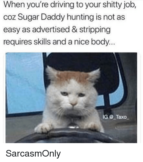 Driving, Funny, and Memes: When you're driving to your shitty job,  coz Sugar Daddy hunting is not as  easy as advertised & stripping  requires skills and a nice body.  G @ TaxO SarcasmOnly