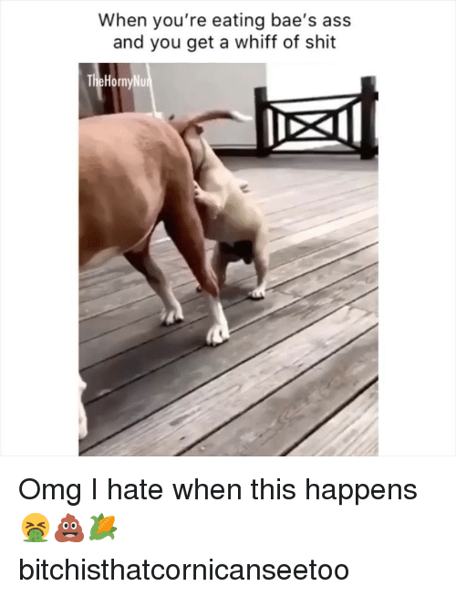 Baes: When you're eating bae's ass  and you get a whiff of shit Omg I hate when this happens 🤮💩🌽 bitchisthatcornicanseetoo