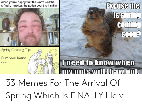 Funny Spring Memes: When you're happy that the warm weather  is finally here but the pollen count is 1 million  Excuse me.  s spriny  comIng  SOOn?  Spring Cleaning Ti  Burn your house  down  Ineed to know whem  mnuts will thaw out 33 Memes For The Arrival Of Spring Which Is FINALLY Here