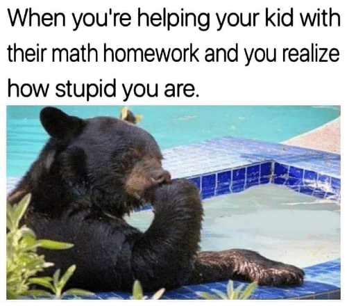 How Stupid: When you're helping your kid with  their math homework and you realize  how stupid you are