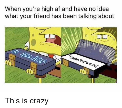 "This Is Crazy: When you're high af and have no idea  what your friend has been talking about  ""Damn that's crazy"" This is crazy"