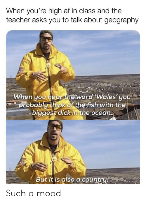 wales: When you're high af in class and the  teacher asks you to talk about geography  When you hearheword Wales' you  probably think of the fish with the  biggest dick in the ocean.  But it is also a country Such a mood