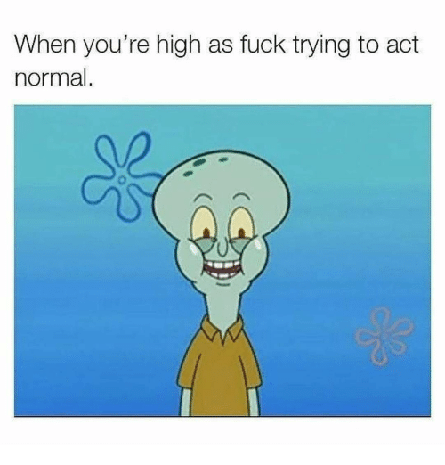 Your Highness: When you're high as fuck trying to act  normal