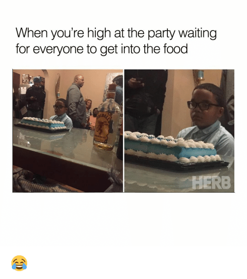 Your Highness: When you're high at the party waiting  for everyone to get into the food  HERB 😂