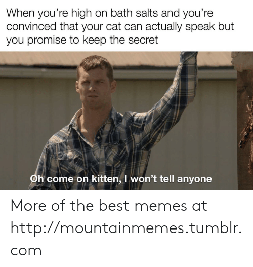 Memes, Tumblr, and Best: When you're high on bath salts and you're  convinced that your cat can actually speak but  you promise to keep the secret  Oh come on kitten, I won't tell anyone More of the best memes at http://mountainmemes.tumblr.com