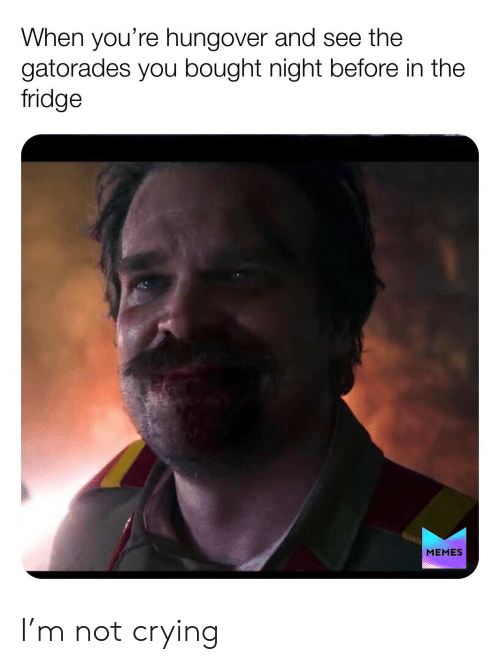 Crying, Memes, and Not Crying: When you're hungover and see the  gatorades you bought night before in the  fridge  MEMES I'm not crying