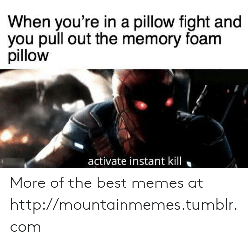 Memes, Tumblr, and Best: When you're in a pillow fight and  you pull out the memory foam  pillow  activate instant kill More of the best memes at http://mountainmemes.tumblr.com