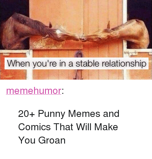 """Punny Memes: When you're in a stable relationship <p><a href=""""http://memehumor.net/post/166392787121/20-punny-memes-and-comics-that-will-make-you"""" class=""""tumblr_blog"""">memehumor</a>:</p>  <blockquote><p>20+ Punny Memes and Comics That Will Make You Groan</p></blockquote>"""