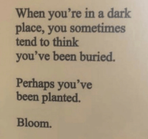 Been, Dark, and Buried: When you're ina dark  place, you sometimes  tend to think  you've been buried.  Perhaps you've  been planted.  Bloom.