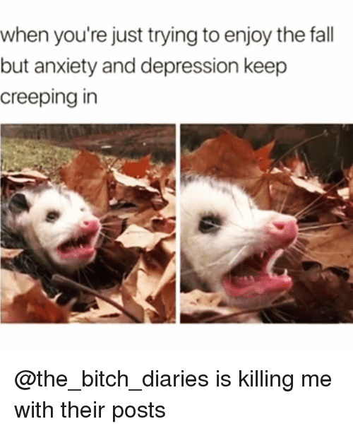 Bitch, Fall, and Funny: when you're just trying to enjoy the fall  but anxiety and depression keep  creeping in @the_bitch_diaries is killing me with their posts😭😭