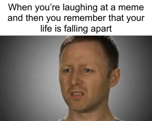 Falling Apart: When you're laughing at a meme  and then you remember that your  life is falling apart