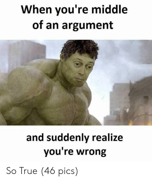 True, Pics, and You: When you're middle  of an argument  and suddenly realize  you re wrong So True (46 pics)