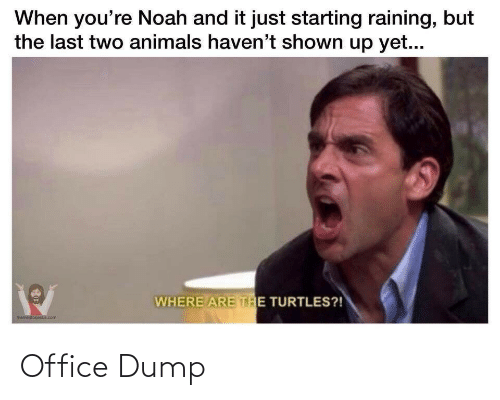 Noah: When you're Noah and it just starting raining, but  the last two animals haven't shown up yet...  WHERE ARE THE TURTLES?!  memestorjesus.com Office Dump