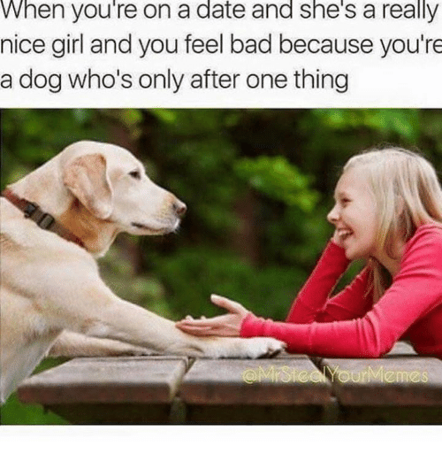 Nice Girles: When you're on a date and she's a really  nice girl and you feel bad because you're  a dog who's only after one thing