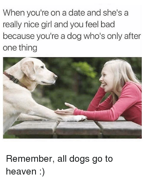 Nice Girles: When you're on a date and she's a  really nice girl and you feel bad  because you're a dog who's only after  one thing Remember, all dogs go to heaven :)
