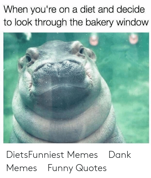 Diets: When you're on a diet and decide  to look through the bakery window DietsFunniest Memes    Dank Memes    Funny Quotes