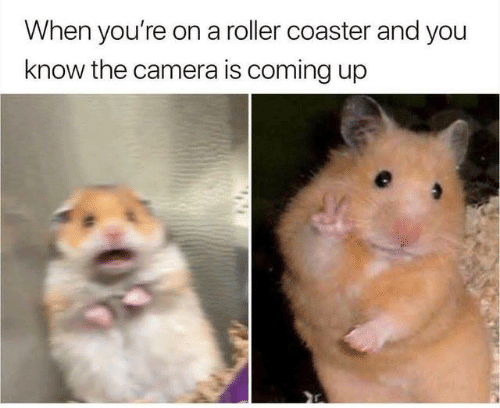 Dank, Camera, and 🤖: When you're on a roller coaster and you  know the camera is coming up