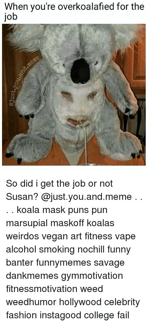 College, Fail, and Fashion: When you're overkoalafied for the  job So did i get the job or not Susan? @just.you.and.meme . . . . koala mask puns pun marsupial maskoff koalas weirdos vegan art fitness vape alcohol smoking nochill funny banter funnymemes savage dankmemes gymmotivation fitnessmotivation weed weedhumor hollywood celebrity fashion instagood college fail