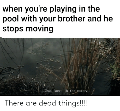 "He Stops: when you're playing in the  pool with your brother and he  stops moving  ""Dead faces in the water. There are dead things!!!!"