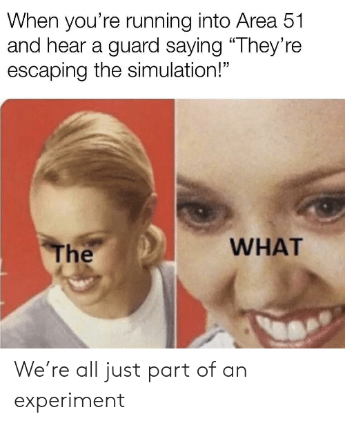 """simulation: When you're running into Area 51  and hear a guard saying """"They're  escaping the simulation!""""  WHAT  The We're all just part of an experiment"""