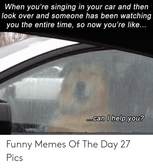 Funny, Memes, and Singing: When you're singing in your car and then  look over and someone has been watching  you the entire time, so now you're like...  ocan I help you? Funny Memes Of The Day 27 Pics