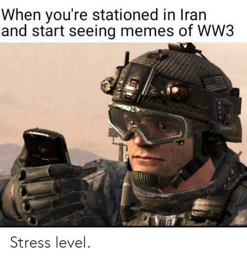 seeing: When you're stationed in Iran  and start seeing memes of WW3  1306 Stress level.