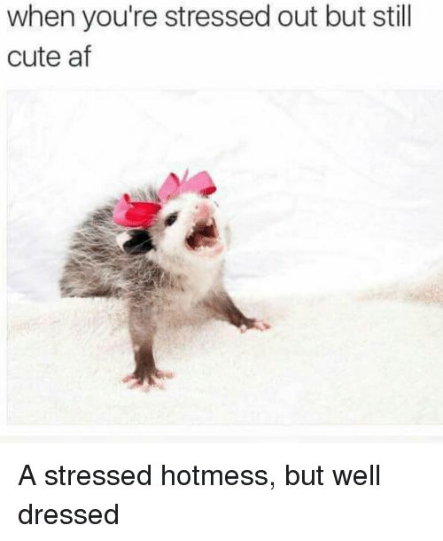 Cute AF: when you're stressed out but still  cute af A stressed hotmess, but well dressed