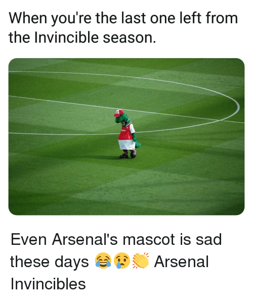 Arsenal, Memes, and Sad: When you're the last one left from  the Invincible season. Even Arsenal's mascot is sad these days 😂😢👏 Arsenal Invincibles