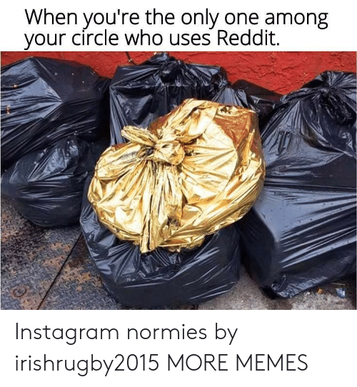 normies: When you're the only one among  your circle who uses Reddit. Instagram normies by irishrugby2015 MORE MEMES