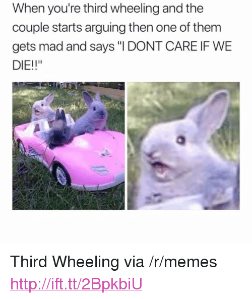 "Wheeling: When you're third wheeling and the  couple starts arguing then one of them  gets mad and says ""I DONT CARE IF WE  DIE!!"" <p>Third Wheeling via /r/memes <a href=""http://ift.tt/2BpkbiU"">http://ift.tt/2BpkbiU</a></p>"