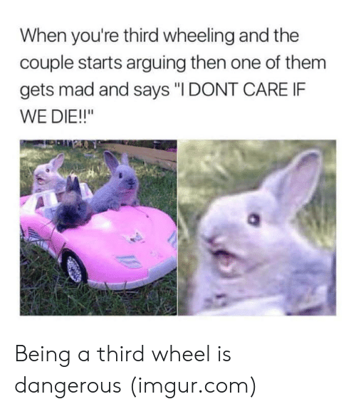 "Wheeling: When you're third wheeling and the  couple starts arguing then one of them  gets mad and says ""I DONT CARE IF  WE DIE!!"" Being a third wheel is dangerous (imgur.com)"