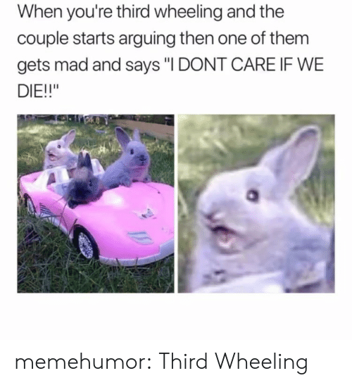 "Wheeling: When you're third wheeling and the  couple starts arguing then one of them  gets mad and says ""I DONT CARE IF WE  DIE!!"" memehumor:  Third Wheeling"