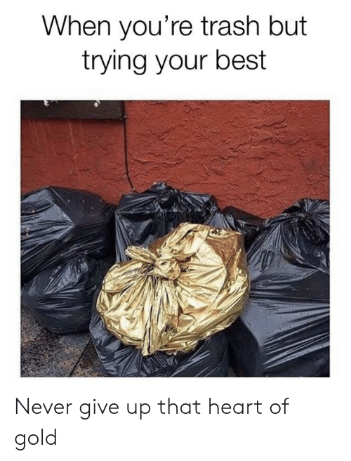 never give up: When you're trash but  trying your best Never give up that heart of gold