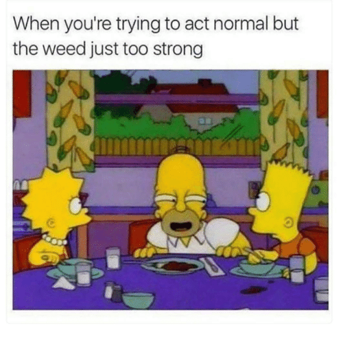 Funny, Tumblr, and Weed: When you're trying to act normal but  the weed just too strong